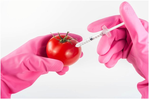 How is Biotechnology Helping in Your Every Day Life