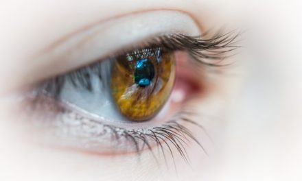 Save your precious eyes from all kind of allergies