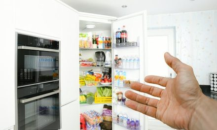 Common Fridge Problems and Solutions