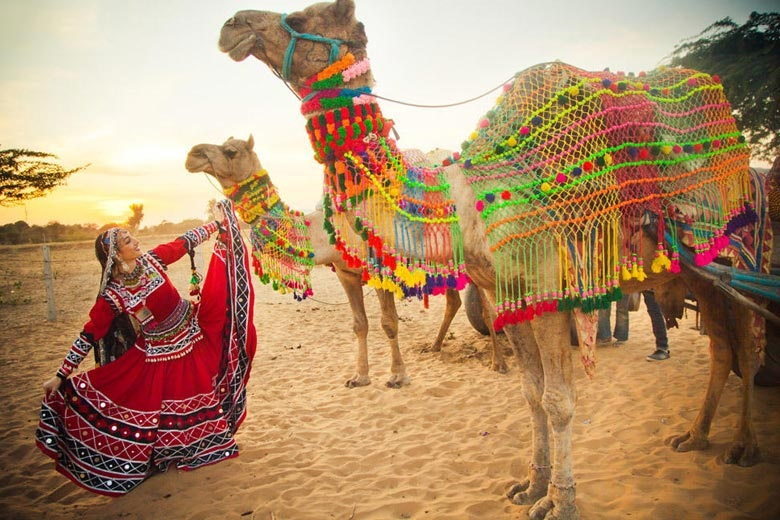Top Attractions in Rajasthan