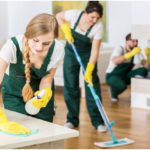 Why You Might Need a Professional Housekeeper